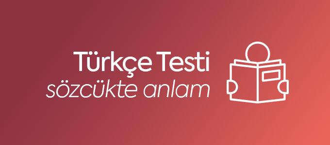 Türkçe Sözcükte Anlam Testi