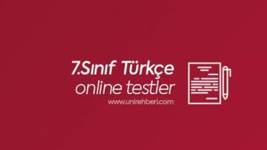 Online 7.Sınıf Türkçe Testleri