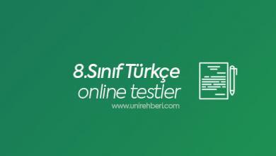 8.Sınıf Türkçe Online Test Çöz