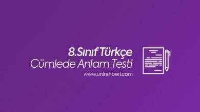 8. Sınıf Türkçe Cümlede Anlam Testleri
