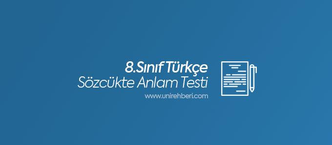 8. Sınıf Türkçe Sözcükte Anlam Testleri
