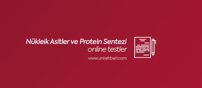 Nükleik Asitler ve Protein Sentezi Test