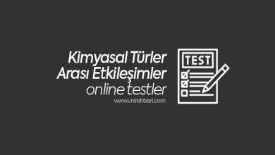 Kimyasal Türler Arası Etkileşimler Test