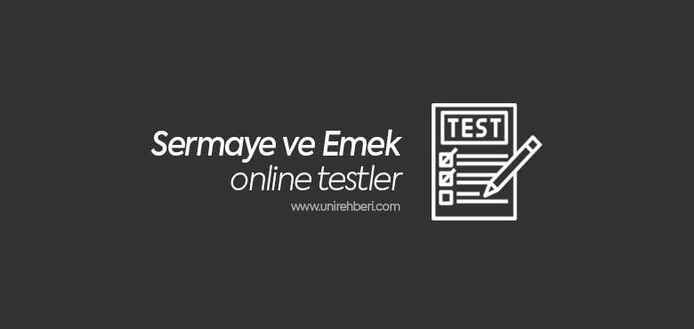 Sermaye ve Emek test